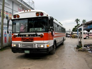 National Transportation Services Limited bus leaving Orange Walk