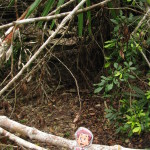 Flat Stanley almost got left behind in the jungle in Tikal. I had to run back to get him before catching my bus to the town of Poptún.